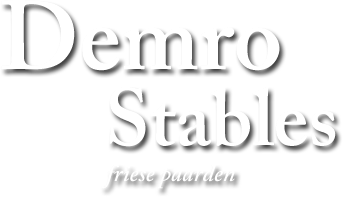 Demro Stables - Friese paarden